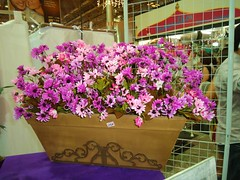 2010-12-11 004 (ARTES BALAIO DE GATOS) Tags: flores de com vasos flôres permanentes segundafeiradalua