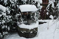 puit sous la neige (pontfire) Tags: wood winter white snow france cold castle ice forest landscape nikon neige normandie paysage campagne normandy chteau blanc froid bois glace 2010 eure hivers fret hautenormandie lemesniljourdain