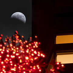 Lunar Eclipse, San Francisco, 2010 (exxonvaldez) Tags: sanfrancisco night eclipse christmastree bankofamerica sfist