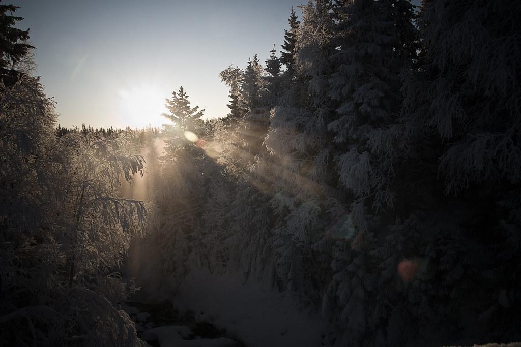 Kaldt i Nordmarka