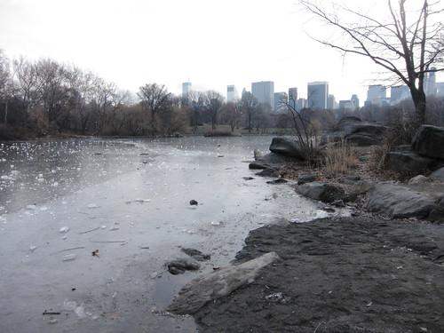 101219_Central_Park_in_December_019