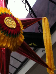 Lovely lovers (blackferien) Tags: street naturaleza birds méxico mexico aves piñatas ciudaddeméxico chilangolandia