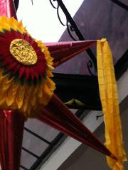 Lovely lovers (blackferien) Tags: street naturaleza birds mxico mexico aves piatas ciudaddemxico chilangolandia