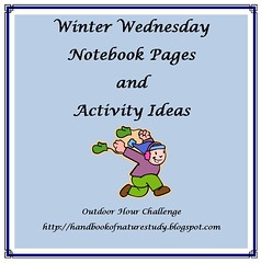 Winter Wednesday Button