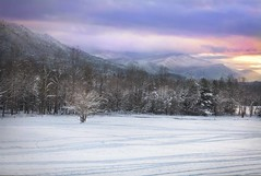Sunset on the Valley (Anne Strickland) Tags: tennessee sunsets cadescove appalachianmountains wintersunsets smokeymountainsgreatsmokeymountainsnationalpark winterincadescovetennessee
