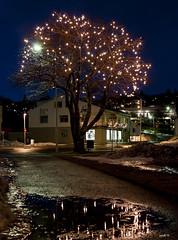 Hin Upplstu Tr Andskotans (mgu) Tags: nightphotography light art love night canon photography iceland lowlight education truth flickr nightimages quality wisdom honesty afterdark flickrphoto eourope ljosvikingur mgu