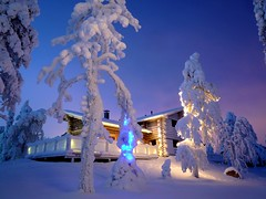 Ruka Cottage (timo_w2s) Tags: trees winter snow forest finland log cabin snowy cottage lapland kuusamo ruka