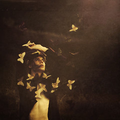 life giving life (brookeshaden) Tags: life mountains grass outdoors death sadness fly butterflies rebirth day7 brookeshaden texturebylesbrumes