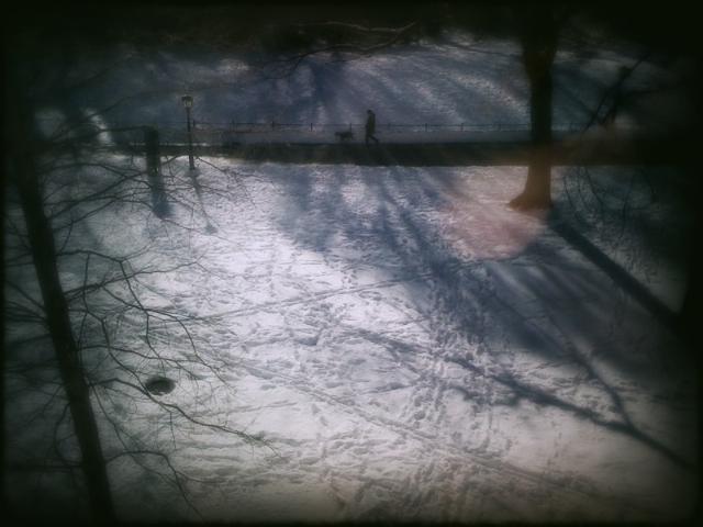 5352753875 8611e89640 o snow daze