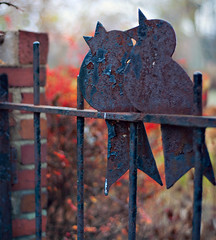 Happy Fence Friday: Rockin' Robin (tweet tweet) Edition! (pixelmama) Tags: november color fall bokeh bricks rustic ironfence hff ironbirds hsm glencoeillinois rockinrobin thejackson5 fencefriday soundtrackmonday tweettweettweet ohthewonderfulcolor