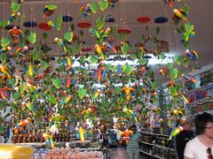 Souvenir Shop (momentcaptured1) Tags: green shop souvenirs colombia parrots raquira
