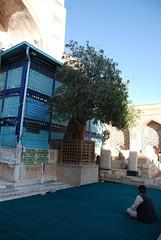 Person Praying at Khawja Abdullah Ansari (Na'eem) Tags: afghanistan religious shrine ansari herat abdullah عبدالله زیارت انصاری مرقد خواجه khawja