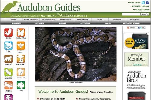 Audubon toolbar 2
