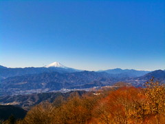日馬富士 画像11