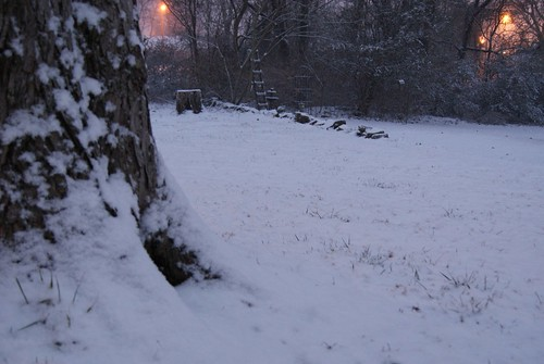 1-20-11 Snow