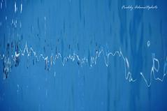 Elettroencefalogramma (Freddy Adams) Tags: alberi nikon mare barche porto rotation riflessi d90 freddyadams