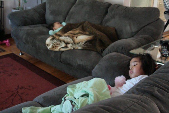 pre-thanksgiving naps