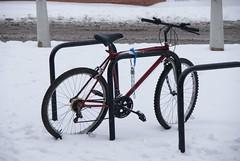 Colchester Snow 021210 (HHA124L) Tags: england snow geotagged unitedkingdom mileend colchester recent 2010 gbr stjohnsward geo:lat=5190273240 geo:lon=093003988