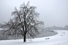Zima nad Wisłą (bazylek100) Tags: winter snow poland polska wawel polen kraków cracow zima polonia wisła vistula cracovia śnieg cracovie krakau pologne krakoff
