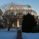winter sun on glass house