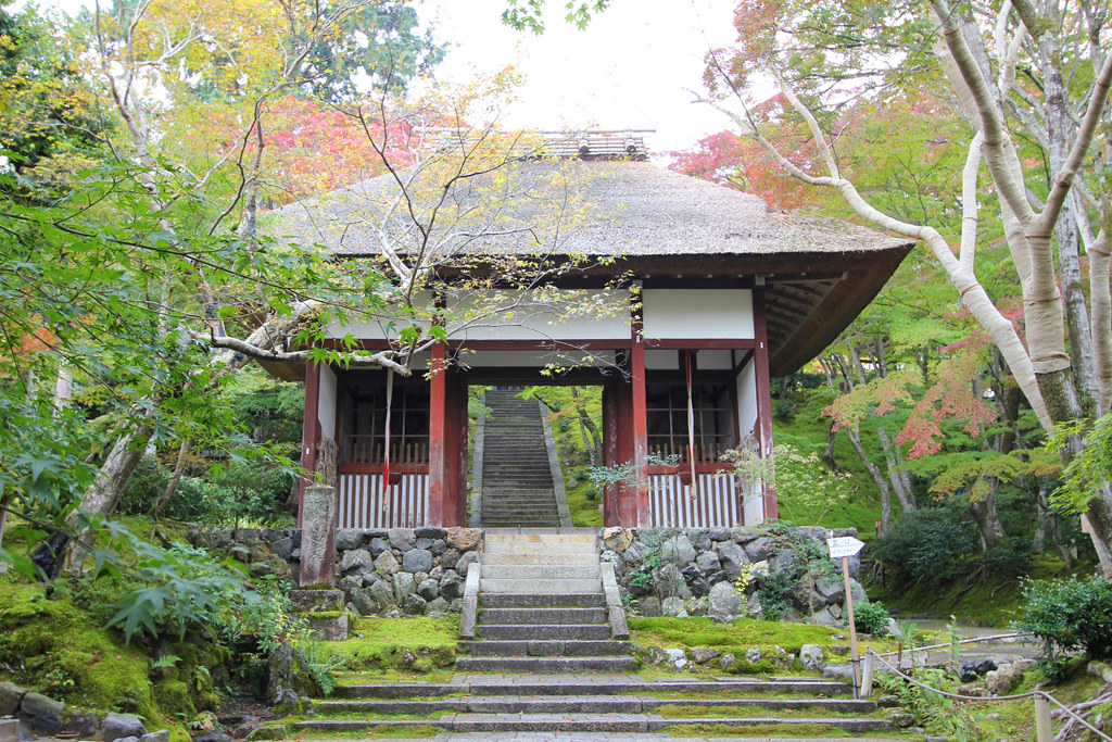 Kyoto, the city of Japanese traditions and culture Part3 (6)