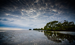 Carpe Diem` (Lockie Cooke) Tags: ocean trees sky reflection beach water clouds canon sand tide brisbane ripples mangroves efs1022mm nudgee 40d lockiecooke