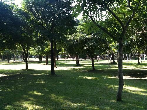 大安森林公園