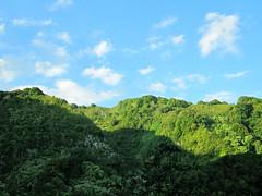 (Claire L. Evans) Tags: sky hawaii maui hanahighway jungle jurassicpark hanahwy
