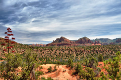 Summer in Sedona in HDR (Seth Oliver Photographic Art) Tags: arizona landscapes nikon sedona redrocks northernarizona beautifulclouds pinoy cathedralrock naturescapes d90 beautifulskies handheldshot desertscapes pseudohdr hdrimages aperturef90 highdynamicrangeimages setholiver1 circularpolarizers 18105mmnikorlens 0008secondexposure magicalredrocksofsedonaarizona summerinsedona