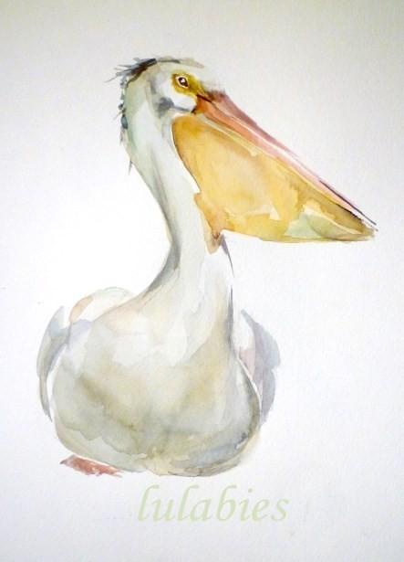 lulabies pelican