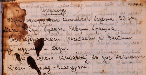 isleri rukopis