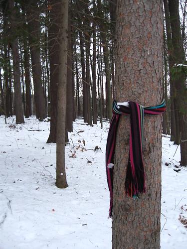 En-scarfed tree