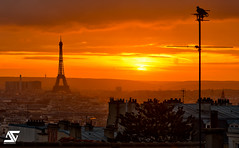 _/\__┼° (A.G. Photographe) Tags: sunset paris france macro tower nikon tour pigeon eiffeltower eiffel montmartre toureiffel ag nikkor français hdr vr parisian anto couchédesoleil photographe 105mm xiii parisien d700 thebestofday gününeniyisi antoxiii hdr7raw agphotographe