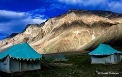 Dusk At Sarchu | Ladakh (dhurjatic) Tags: camp india nature landscape evening dusk places tent kashmir himalaya leh ladakh sarchu