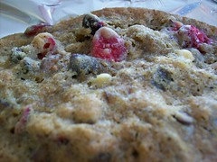 Craggy (jazzijava) Tags: family food holiday home cooking cookies fruit recipe baking blog italian december photos sweet chocolate egg nuts blogger butter cranberries chestnuts blogged cooked sour tart whitechocolate baked christmascookies tangy shortening whatsmellssogood httpkitchenconfidantecom cranberrychestnutcookies