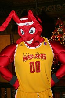 Mad Ants Mascot