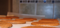 Orange Gingerbread Rum Cookies