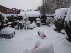 Big Freeze 2010