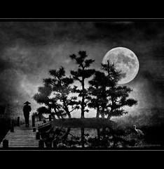 Buddha's Island (h.koppdelaney) Tags: life park bridge trees moon art heron digital
