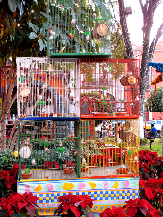 Faux birds in cages :)