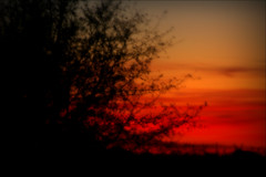 The Inner Fire (Dean Leh Photography) Tags: new sunset red orange southwest mexico fire flames dean inner thankfulness leh encounter rekindle