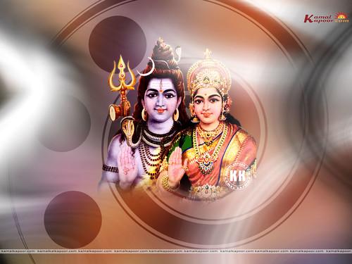 shivji wallpapers lord shiva parvati wallpaper a photo on flickriver