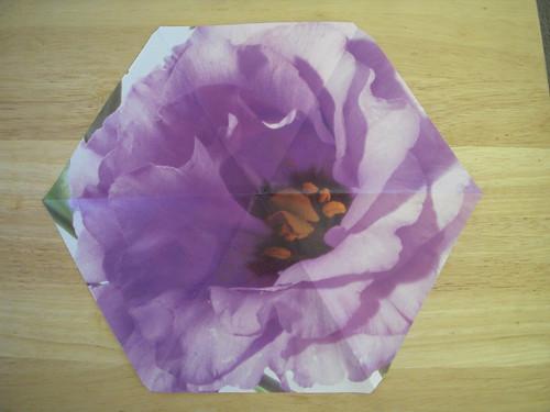 Origami #7.5: Hexagonal Vase