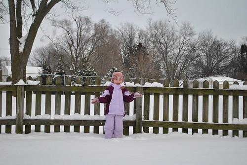 snowfall jan 2011 057