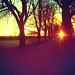 Sunny Sunday - Scott Dunwoodie
