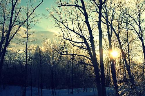 good morning, hudson valley