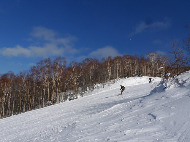 雪道(綠線)