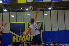 2016-09-24 MVB Alumni vs Hawks (MP Cater Photography) Tags: 2016 hawks humber vball