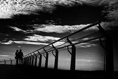...afterworksunset... (*ines_maria) Tags: vienna city urban urbanspace citylife sunset light clouds contrast bw noiretblanc blancetnoire friend monochrome fence hff sky