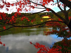 Kinkaku-ji iin Autumn2 (love_child_kyoto) Tags: travel november autumn fab japan architecture japanesegarden maple kyoto autumnleaves    olympuspen   kinkakuji  worldheritage rokuonji  11  kitayama    supershot mishimayukio   kyokochi    ashikagayoshimitsu     microfourthirds    afhht kyokoike